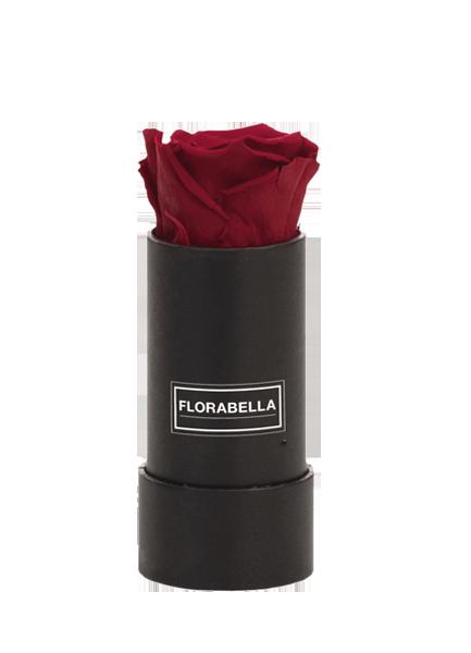 xs-schwarz-classic-burgundy