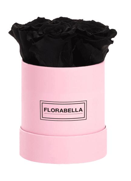s-pink-black-beauty
