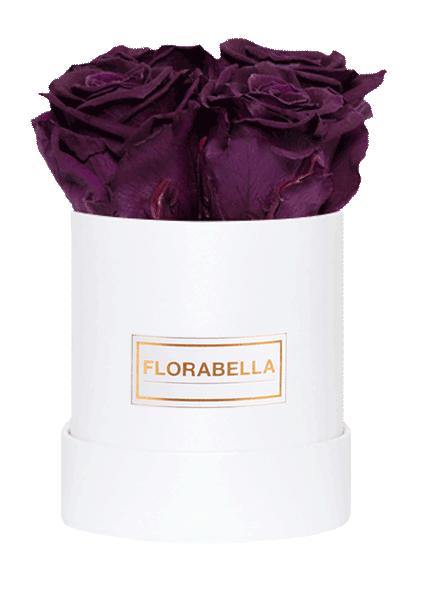 s-weiss-rosegold-velvet-plum