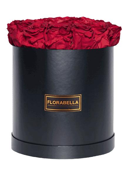 xl-schwarz-rosegold-royal-red