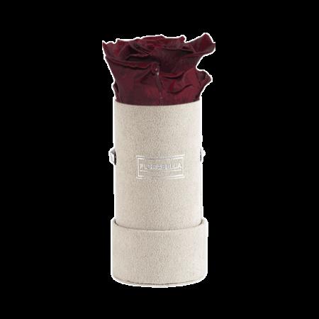 xs-greyvelvet-burgundy