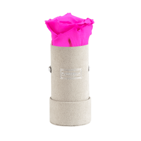 xs-greyvelvet-hot-pink