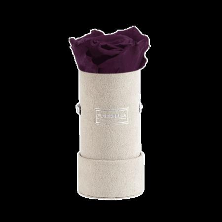 xs-greyvelvet-velvet-plum