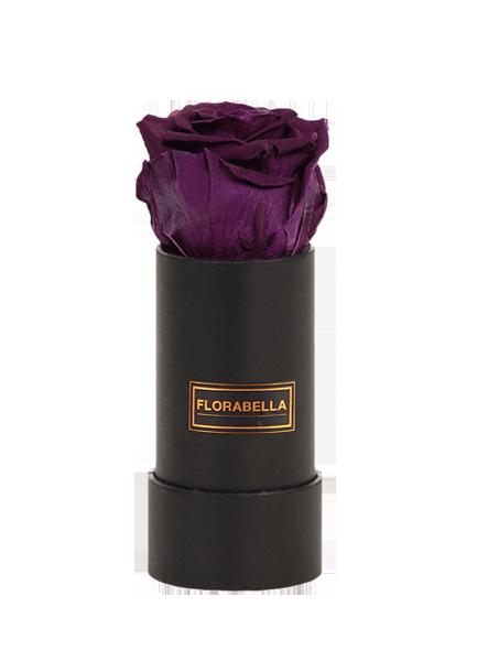 xs-rosegold-black-velvetplum