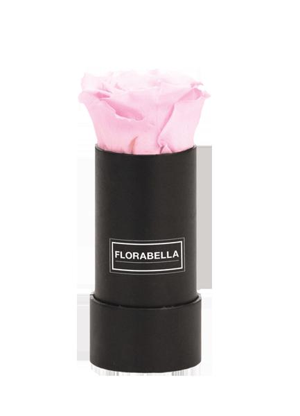 xs-schwarz-classic-bridal-pink