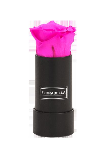 xs-schwarz-classic-hot-pink